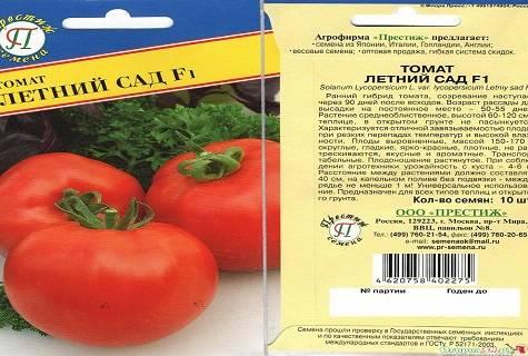 Неприхотливый сорт — томат иришка f1: подробное описание помидоров и советы по выращиванию