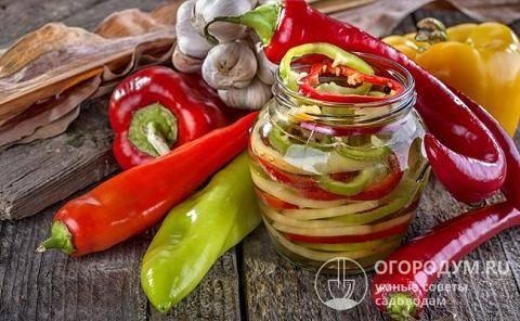Как засолить горький перец: лучшие рецепты с пошаговым приготовлением