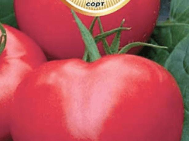 Томат десертный розовый: характеристика и описание сорта с фото, рекомендации по выращиванию