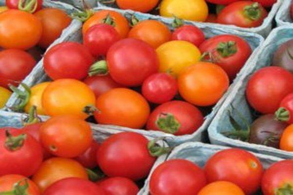 Характеристика и описание сорта томата Женечка, его урожайность