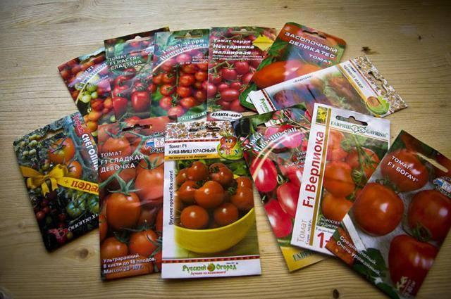 Пошаговая инструкция, как вырастить томат «валютный»: описание и секреты грамотного ухода