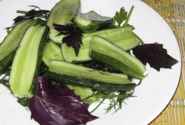 Маринованные баклажаны на зиму: 7 рецептов как мариновать синие