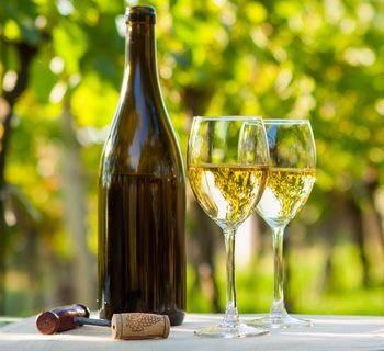 Как сделать вино в домашних условиях своими руками.