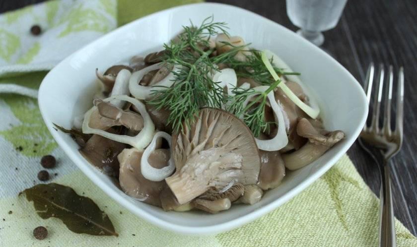 Рецепты как быстро и вкусно солить вешенки в домашних условиях