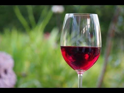 Почему пахнет брагой домашнее вино, как убрать запах дрожжей и способы очистки