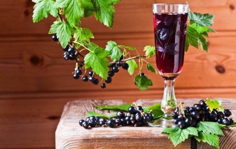 Как приготовить вино из замороженных ягод в домашних условиях по простому рецепту