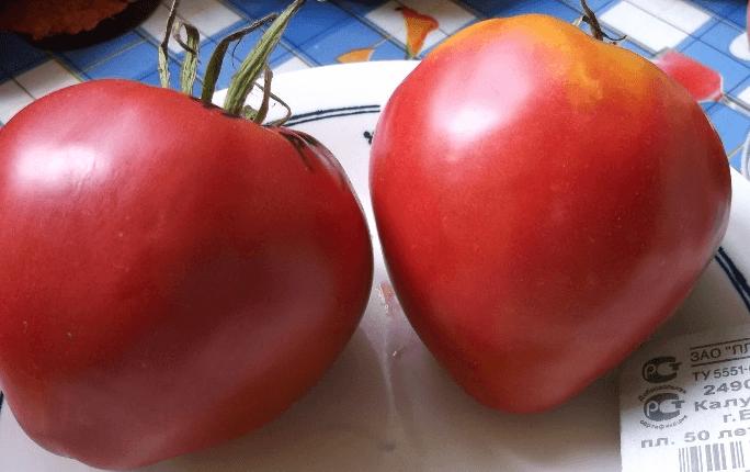 Томат чудо гроздь: описание сорта и 4 особенности выращивания
