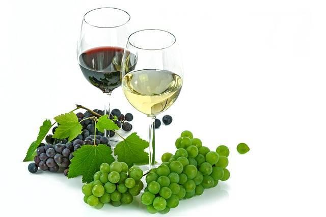 Как сделать домашнее вино из айвы