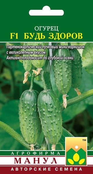 Огурец «мурашка» — описание характеристик сорта f1. посадка, уход, урожайность и выращивание из семян (фото)