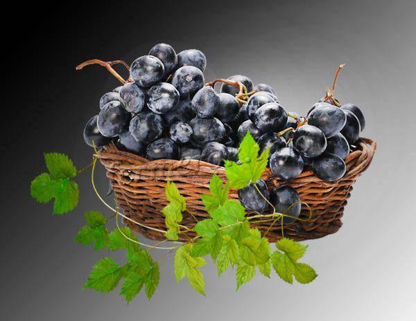 Сорт винограда агат донской