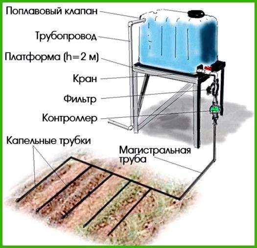 Автоматический полив теплиц