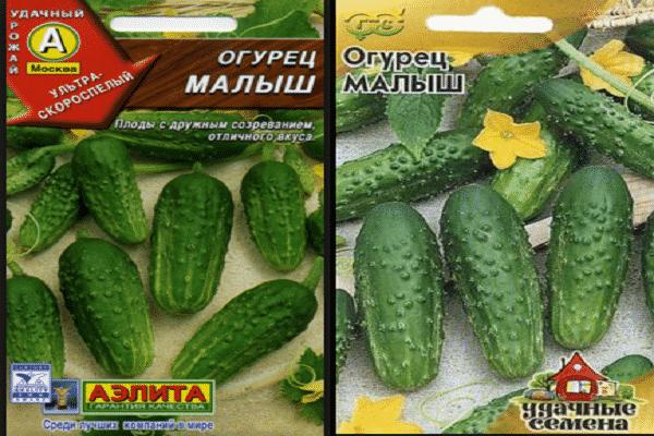 Отечественный гибрид огурцов «малыши карандаши f1»: фото, видео, описание, посадка, характеристика, урожайность, отзывы