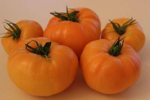 Сорт томата черный ананас