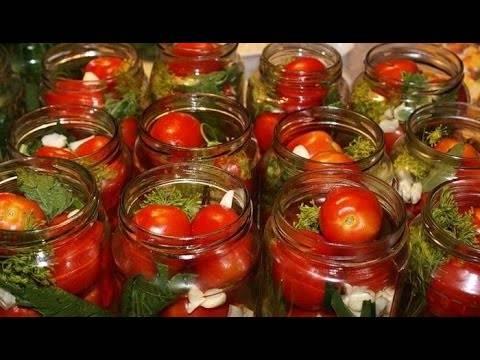 ТОП 14 рецептов консервирования помидоров с горчицей на зиму