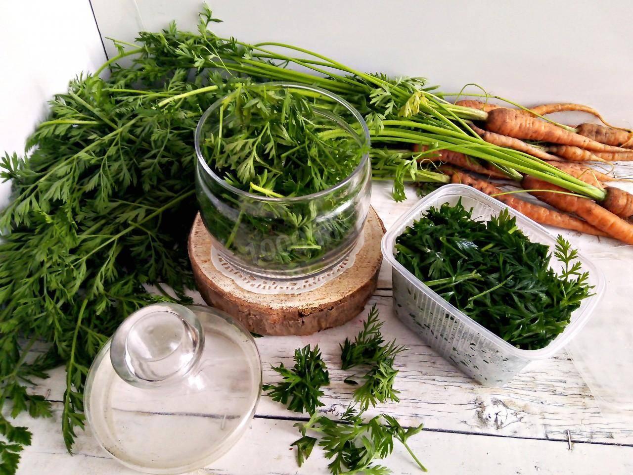 4 лучших пошаговых рецепта заготовок морковной ботвы на зиму