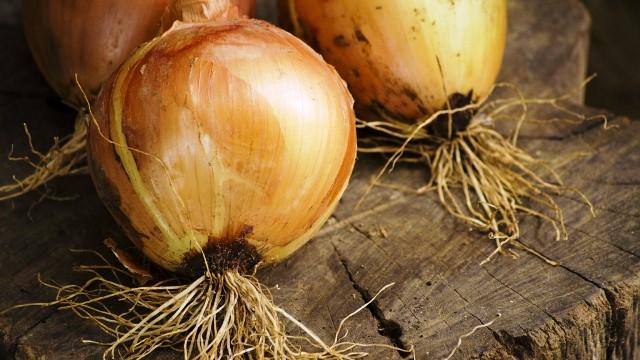 Какие удобрения нужны для роста луковичной головки?