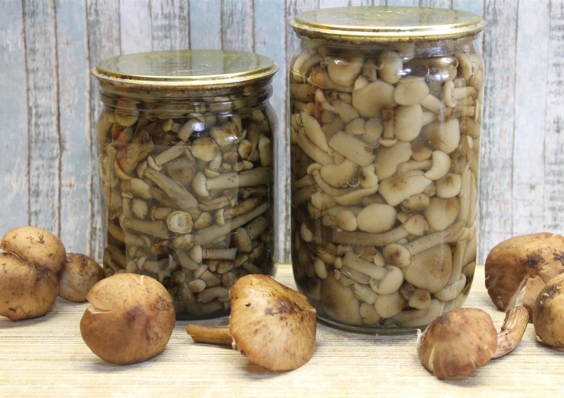 Срок хранения маринованных грибов дома – в холодильнике и без, в квартире и погребе