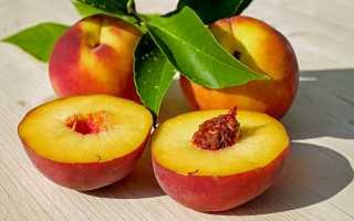 Как правильно заморозить персики на зиму свежими в морозилке в домашних условиях