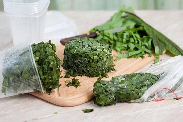 13 лучших рецептов заготовки зелени в домашних условиях на зиму
