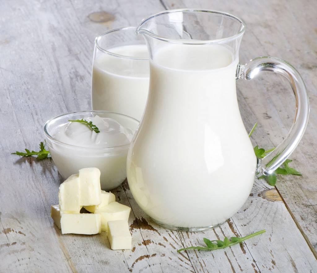 Молоко буйвола: польза и вред, состав, жирность