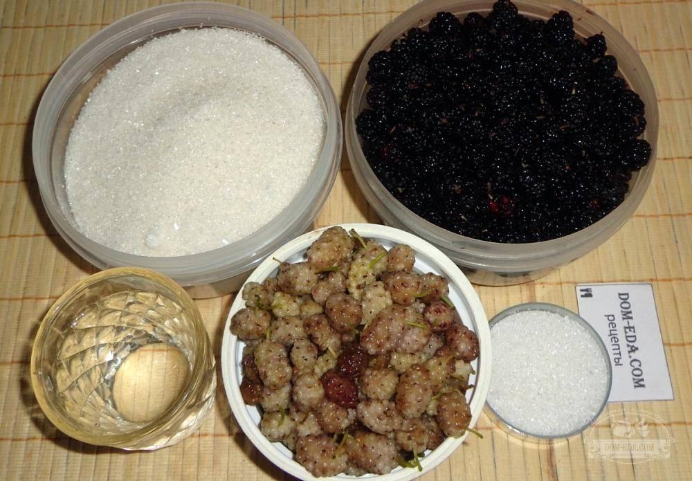 Варенье из шелковицы на зиму — лучшие рецепты в домашних условиях