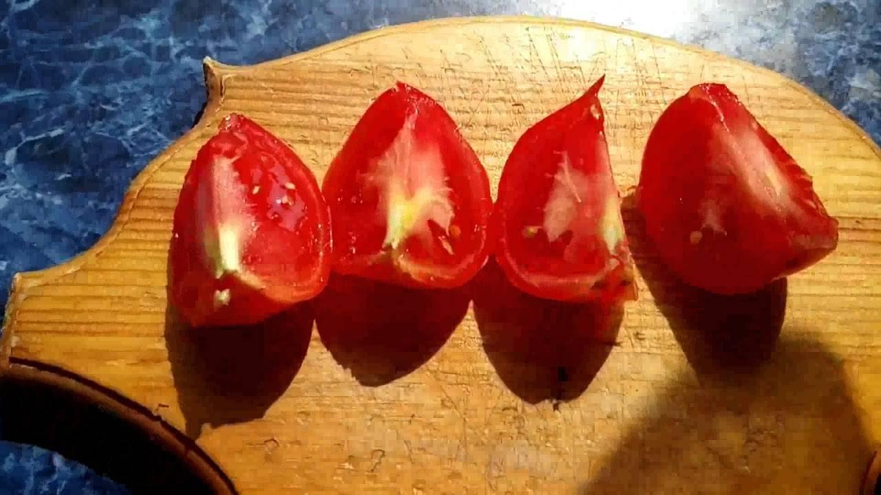 В каком грунте томат «розмарин» дает наибольшую урожайность и что еще на неё влияет?