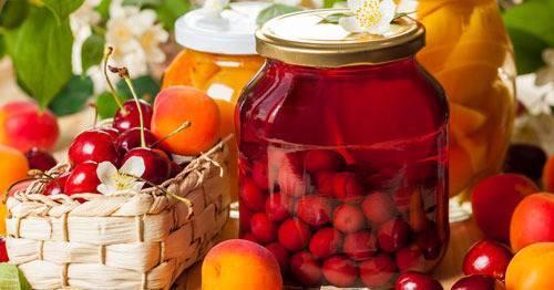 13 рецептов приготовления консервации из сливы в сиропе на зиму