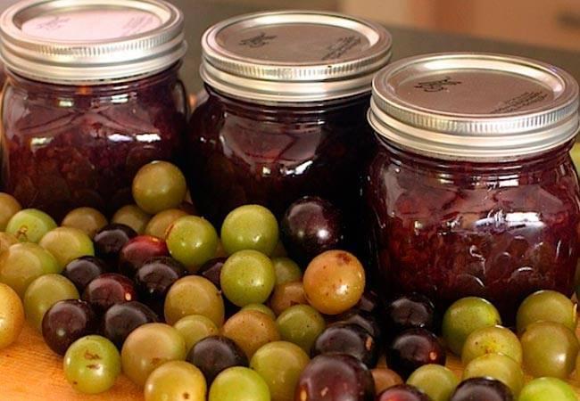Виноград консервированный на зиму как оливки