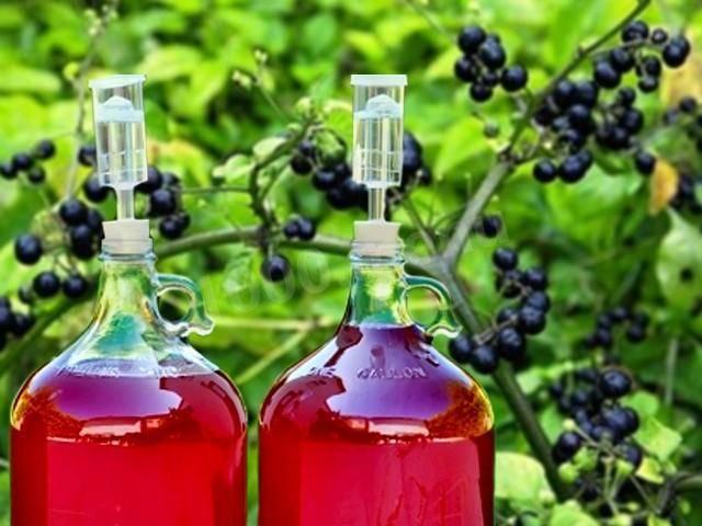 ТОП 2 рецепта приготовления вина из санберри в домашних условиях