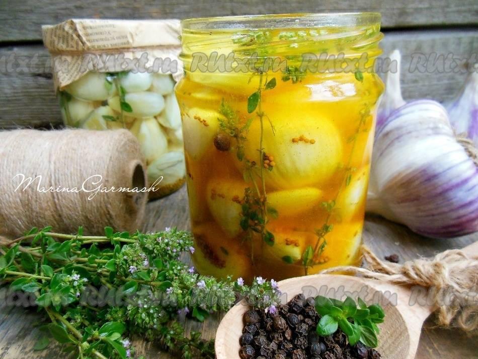 6 простых рецептов заготовки кинзы на зиму