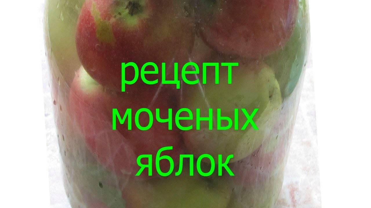 Делаем в домашних условиях моченые яблоки – рецепты на зиму
