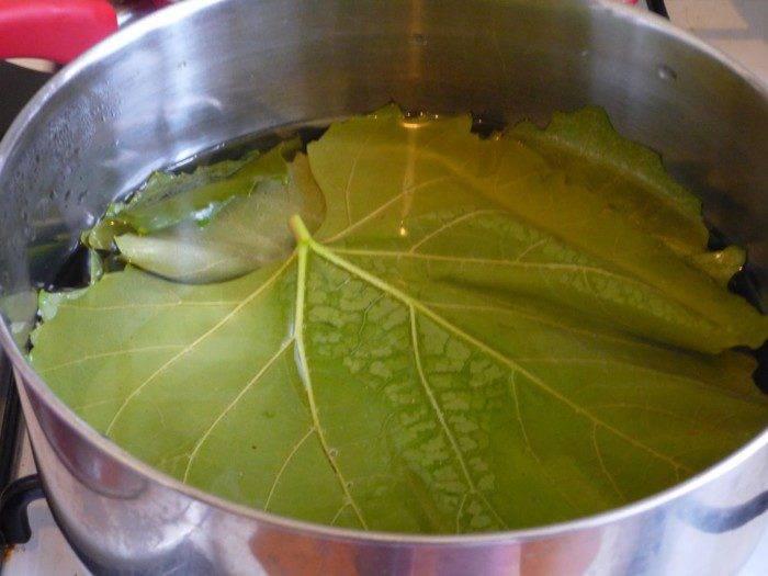 Виноградные листья в засолке огурцов что меняют. простой рецепт маринования огурцов в виноградных листьях на зиму