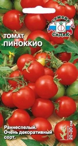 Тонкости выращивания и характеристика томата пиноккио