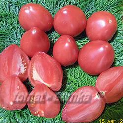 Новые лучшие сорта томатов на 2020 по вкусовым качествам: характеристика и описание сортов