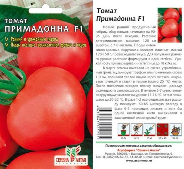 Характеристика сорта томатов «примадонна», описание помидоров