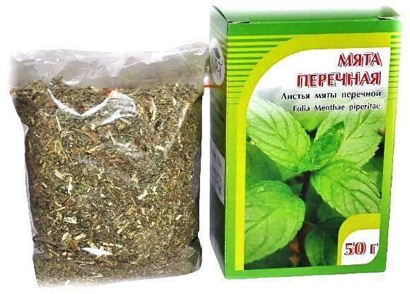 Выращивание и применение полевой мяты