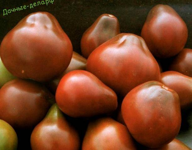 Томат груша чёрная: вкусный сорт универсального назначения
