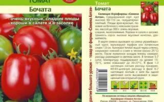 Мелкие сорта помидоров: обзор, описание, особенности выращивания. мелкоплодные сорта томатов