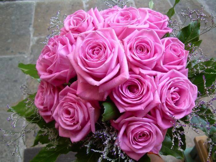 Характеристики и особенности розы аква. отзывы цветоводов