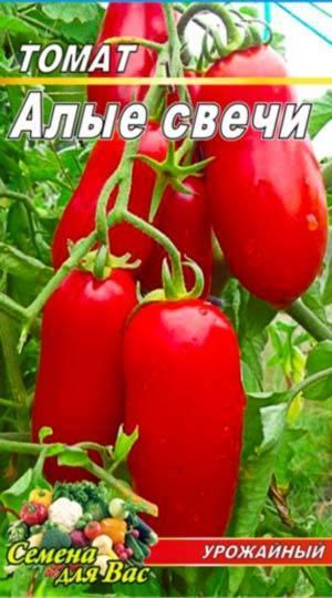 Фото, отзывы, описание, характеристика, урожайность сорта томата «алые свечи»