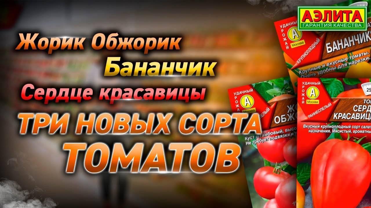 Описание сорта томата жорик-обжорик, особенности выращивания и урожайность
