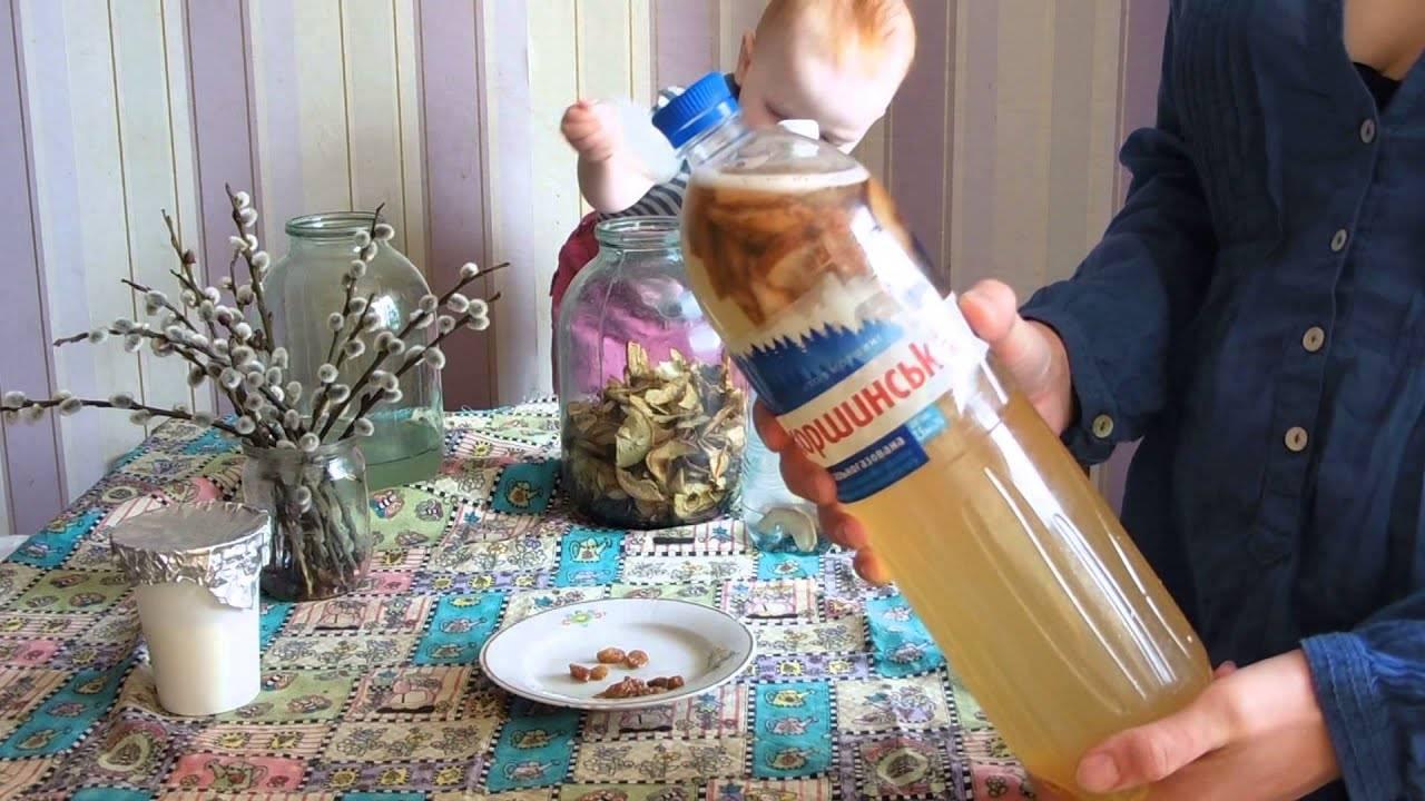 Как закатать березовый сок в домашних условиях