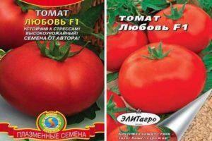 Томат сибирский сюрприз: характеристика и описание сорта, выращивание и уход с фото