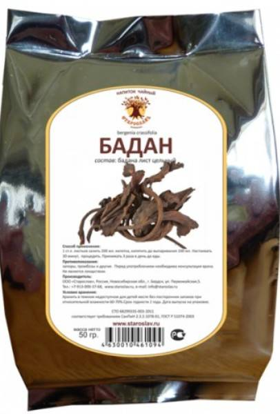 Полезные свойства бадана, применение в гинекологии, лечении жкт