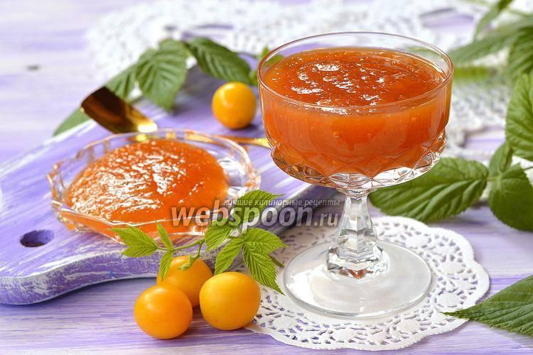 Густое повидло из абрикосов, без косточек, на зиму - 5 простых рецептов в домашних условиях