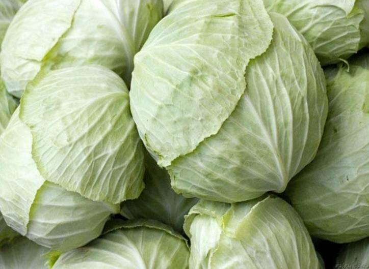 Брюква: забытый полезный овощ