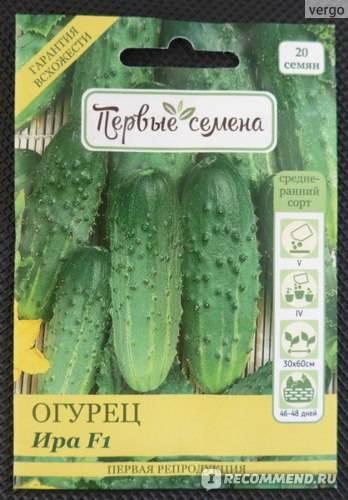 9 незаменимых гибридов огурцов, которые я советую выращивать всем