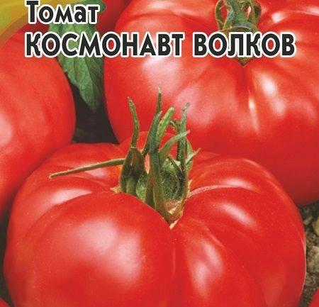 Томат космонавт волков: характеристика, урожайность, фото, отзывы