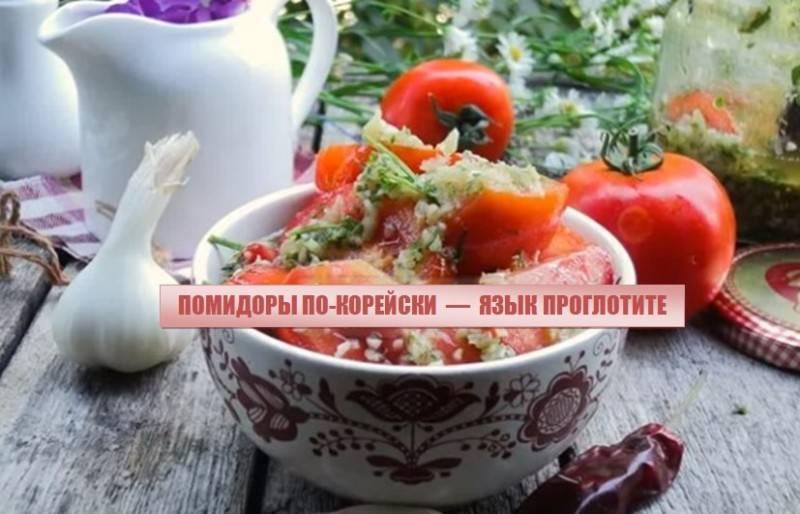11 лучших рецептов приготовления аджики из помидоров на зиму в домашних условиях