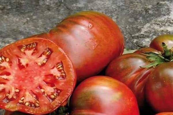 Как выращивать темноплодный томат? описание особенностей культивирования помидора черномор